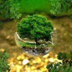 Nuove direttive rifiuti per gestione, discariche e imballaggi